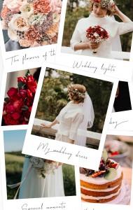 استوری عروسی