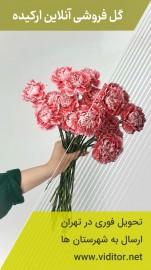 قالب استوری گل فروشی